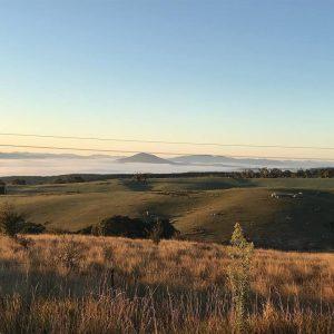 NSW landscape