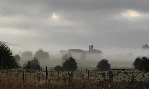 NSW mist